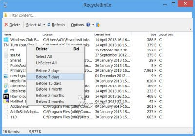 Recycle Bin Manager for Windows