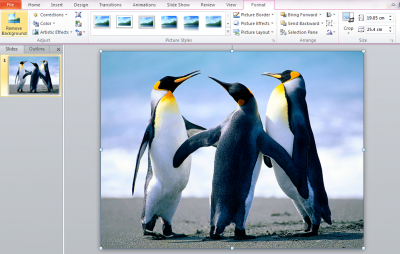 Remove image backgrounds using PowerPoint