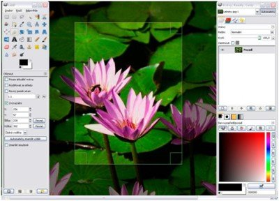 GIMP Free Professional Image Editor for Windows