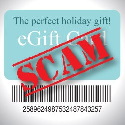 Avoid Online Shopping Fraud & Holiday Season Scams