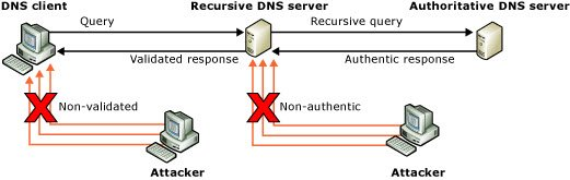 DNS Cache Poisoning and Spoofing