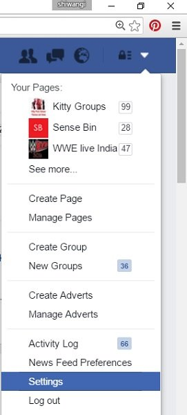 Manage Facebook Ad Preferences