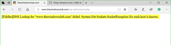 DNS lookup for website failed