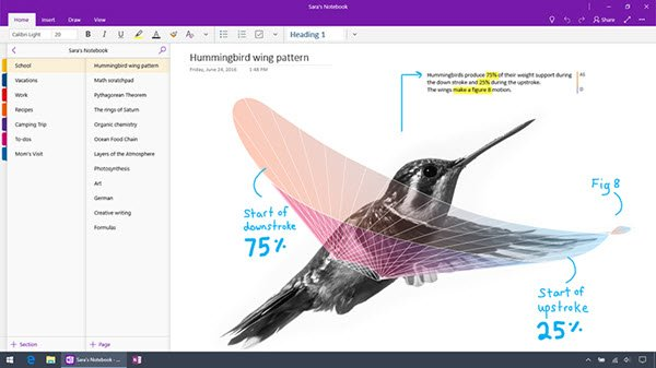 difference between OneNote and OneNote 2016