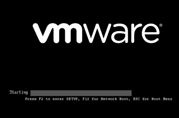 Open and use BIOS in VMware Workstation
