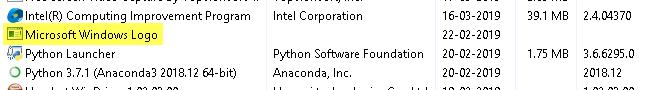 Microsoft Windows Logo process im Task Manager
