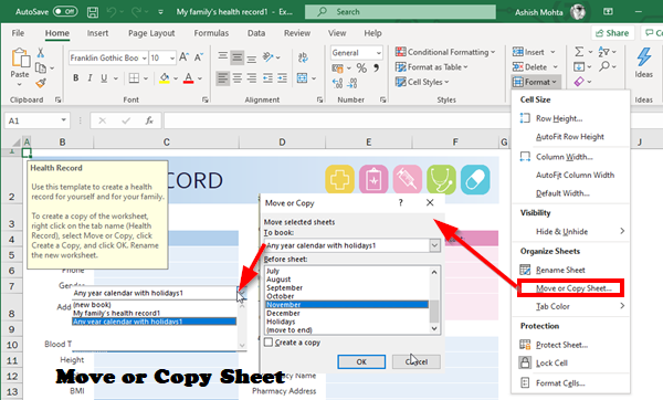 Copy or Move Sheets into Excel File