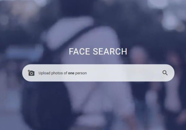 How to search for a face on the web
