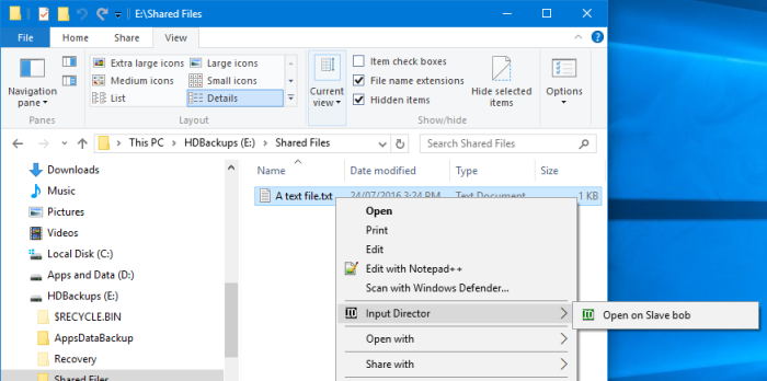 How to use Input Director on Windows 10