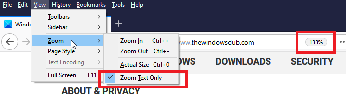 Text Zoom only in Firefox