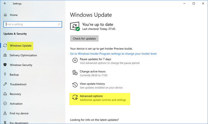 Update other Microsoft products using Windows Update
