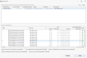 How to use Echosync Software for Windows PC