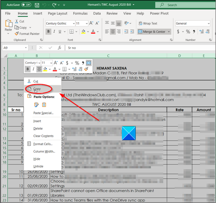 How to copy Column Width in Excel