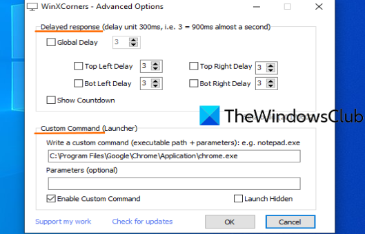 set time delay and custom command using advanced options