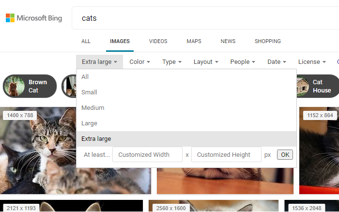 Image Search Bing