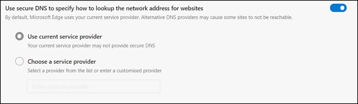 Secure DNS Browser