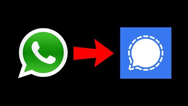 WhatsApp-Signal