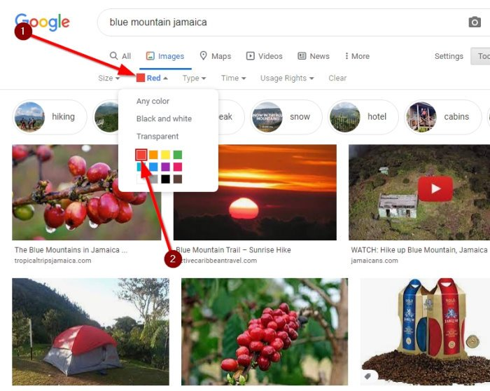 How to search Images by Color in Google