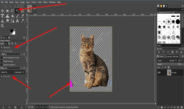 Remove Background from Photo using GIMP