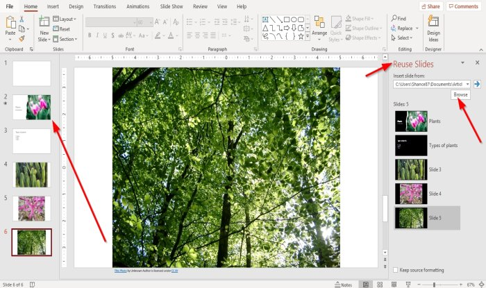 How to Reuse or Import Slides from one PowerPoint presentation to another