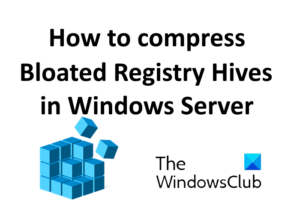 compress bloated registry hives