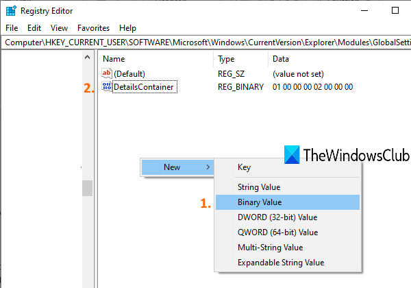 create DetailsContainer Binary Value