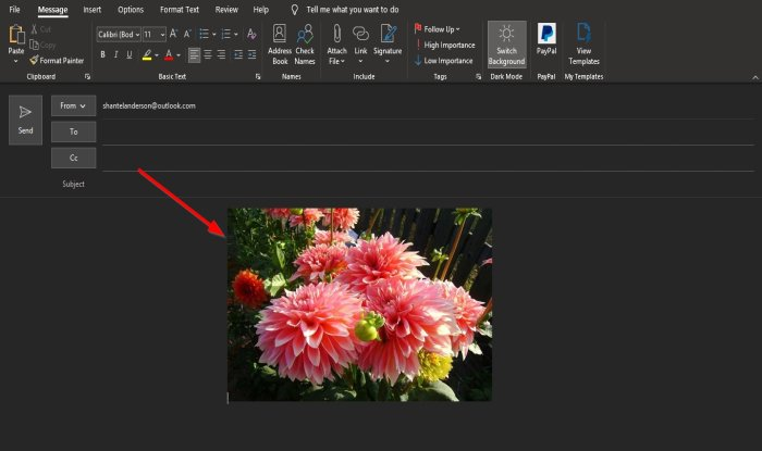 insert Picture, Graphics and Shapes in the Outlook email body