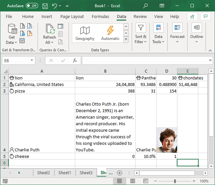 How to use Automatic Data Type Feature in Excel