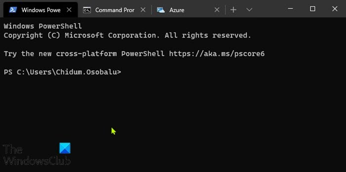 How to use the Windows Terminal