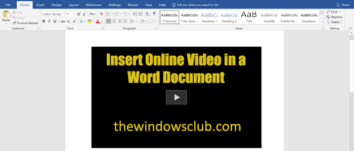 How to insert an Online Video into a Word Document