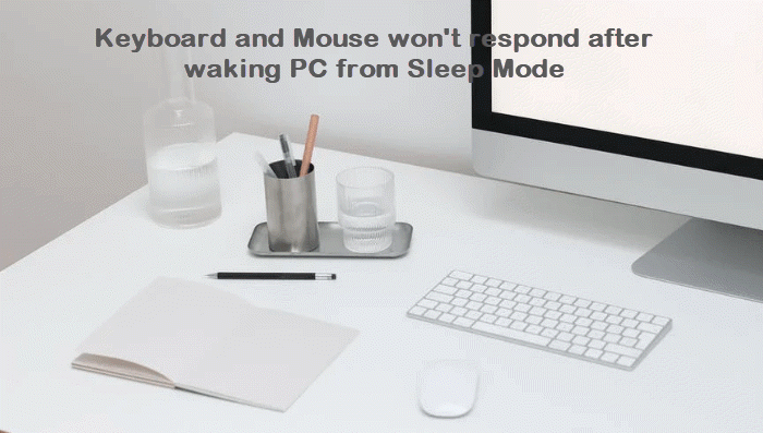 Keyboard and Mouse won't respond after waking PC from Sleep Mode