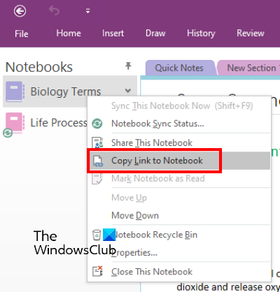copy link to notebook onenote