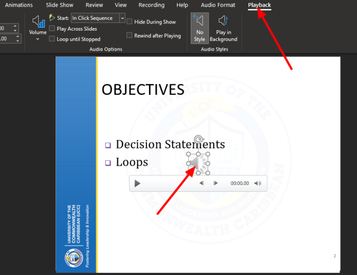 How do I hide the audio icon in PowerPoint
