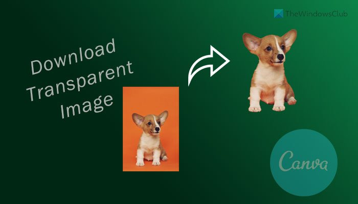 How to download transparent image or logo from Canva