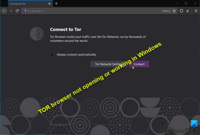 TOR browser not opening or working in Windows