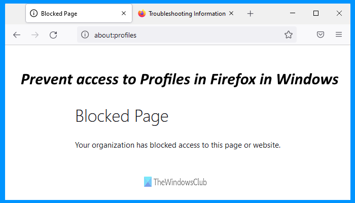 prevent access to profiles firefox