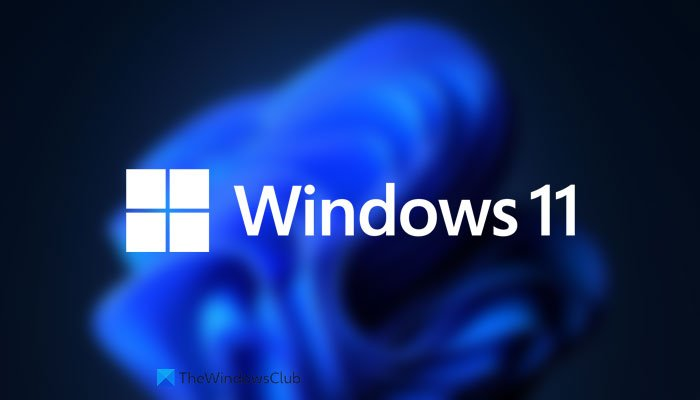 Download Windows 11 Disk Image (ISO) file from Microsoft